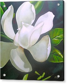 Magnolia Delight Painting Acrylic Print by Chris Hobel