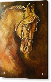 A Winning Racer Brown Horse Acrylic Print by Remy Francis