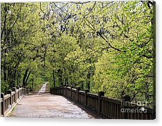 Acrylic Print featuring the photograph  Matthiessen State Park In Spring by Paula Guttilla