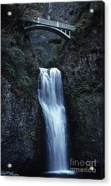 Acrylic Print featuring the photograph  Multnomah Falls by Edward R Wisell