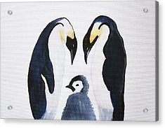 Penguins With Chick  Acrylic Print by Art Spectrum