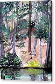 Plein Aire Durand Park Acrylic Print by Judy Via-Wolff