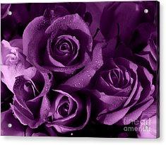 Purple Haze Acrylic Print by Nancie DeMellia