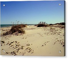 South Padre Island Dunes Acrylic Print by Evelyn Patrick