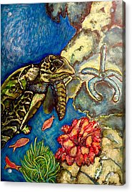 Sweet Mystery Of The Sea A Hawksbill Sea Turtle Coasting In The Coral Reefs Original Acrylic Print by Kimberlee Baxter