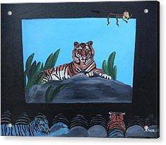 Tiger Show Acrylic Print