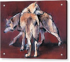 Wolf Composition Acrylic Print by Mark Adlington