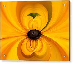 Yellow 3 Acrylic Print by Jouko Lehto
