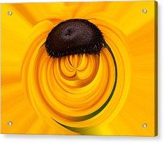 Yellow Acrylic Print by Jouko Lehto