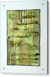 01328 Slide Acrylic Print by AnneKarin Glass