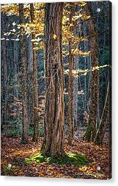 #0187 - Dummerston, Vermont Acrylic Print