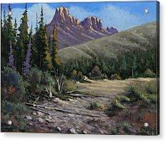 040610-912 Horse Thief Creek Acrylic Print by Kenneth Shanika