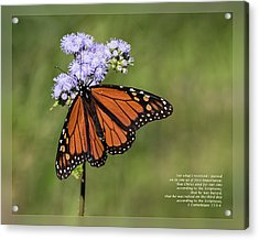 Acrylic Print featuring the photograph 1 Corinthians 15 3-4 by Dawn Currie