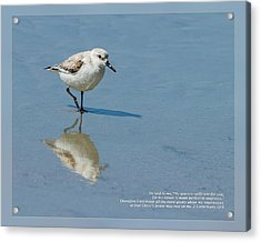 Acrylic Print featuring the photograph 2 Corinthians 12 9 by Dawn Currie