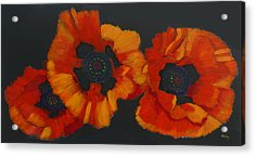 Acrylic Print featuring the painting 3 Poppies by Richard Le Page