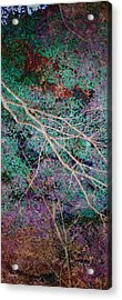 A Forest Of Magic Acrylic Print