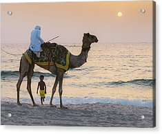 Little Boy Stares In Amazement At A Camel Riding On Marina Beach In Dubai, United Arab Emirates -  Acrylic Print
