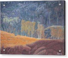 A Ray Of Sun Acrylic Print by Harvey Rogosin