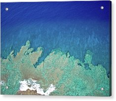 Acrylic Print featuring the photograph Abstract Aerial Reef by Denise Bird
