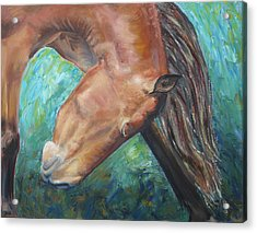 Abstract Horse One Acrylic Print