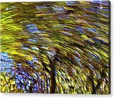 Abstract Trees Acrylic Print by Susan Leggett