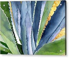 Agave 2 Acrylic Print by Eunice Olson