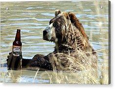 Alaskan Amber Acrylic Print by Wildcat Photography