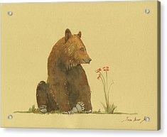 Alaskan Grizzly Bear Acrylic Print by Juan Bosco