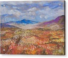 Alaskan Meadow Acrylic Print