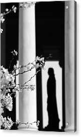 Acrylic Print featuring the photograph Alone by Mitch Cat