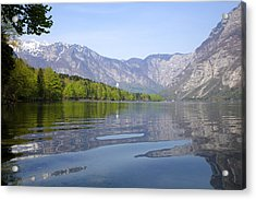Acrylic Print featuring the photograph Alpine Clarity by Ian Middleton