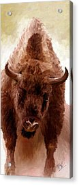 Acrylic Print featuring the painting American Bison by James Shepherd
