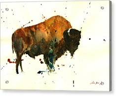 American Buffalo Watercolor Acrylic Print