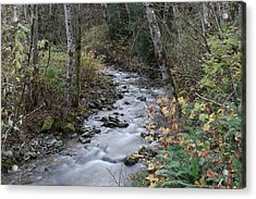 Acrylic Print featuring the photograph An Autumn Stream by Jeff Swan