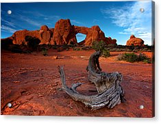 Acrylic Print featuring the photograph Arches by Evgeny Vasenev