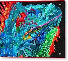 Arch's Iguanas Acrylic Print
