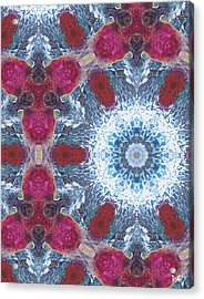 Arctic Blossom Acrylic Print