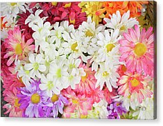 Artificial Flowers Acrylic Print