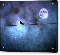 Acrylic Print featuring the photograph Ask Me For The Moon by Jan Amiss Photography