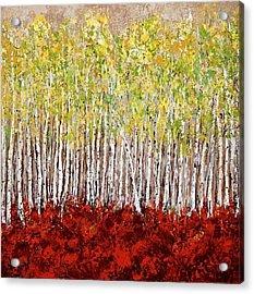Aspen Birch Tree Grove Acrylic Print by Vicki Conlon
