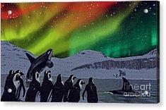 Aurora Borealis Acrylic Print by Methune Hively