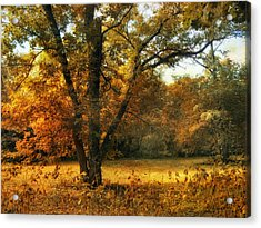 Autumn Arises Acrylic Print