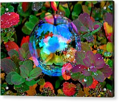 Autumn Bubble Acrylic Print