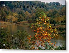 Autumn Colors Acrylic Print by Gary Wonning