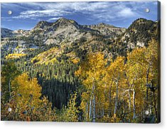 Autumn Colors In The Wasatch Mountains Acrylic Print