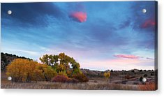 Acrylic Print featuring the photograph Autumn Days by Tim Reaves