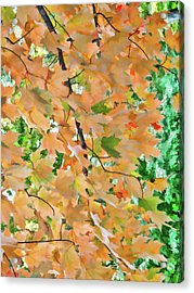 Autumn Foliage 3 Acrylic Print