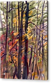 Autumn Leaves Acrylic Print by Donald Maier