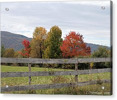 Autumn On Point Mountain Acrylic Print