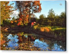 Autumn Palette Acrylic Print by Joann Vitali